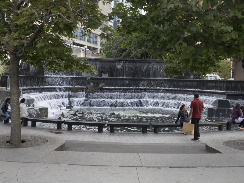 Salmon run fountain, Toronto, Canada stock photography