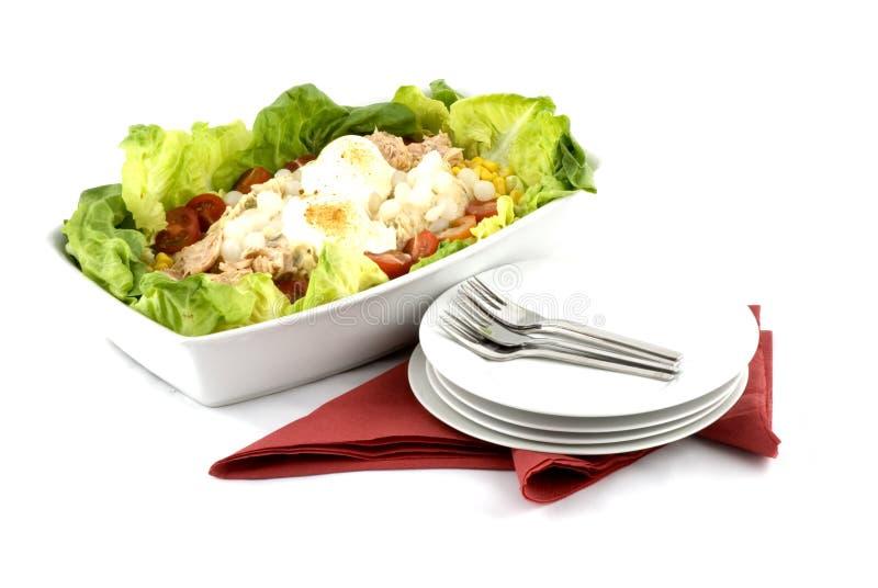 Salmon-salad royalty free stock image