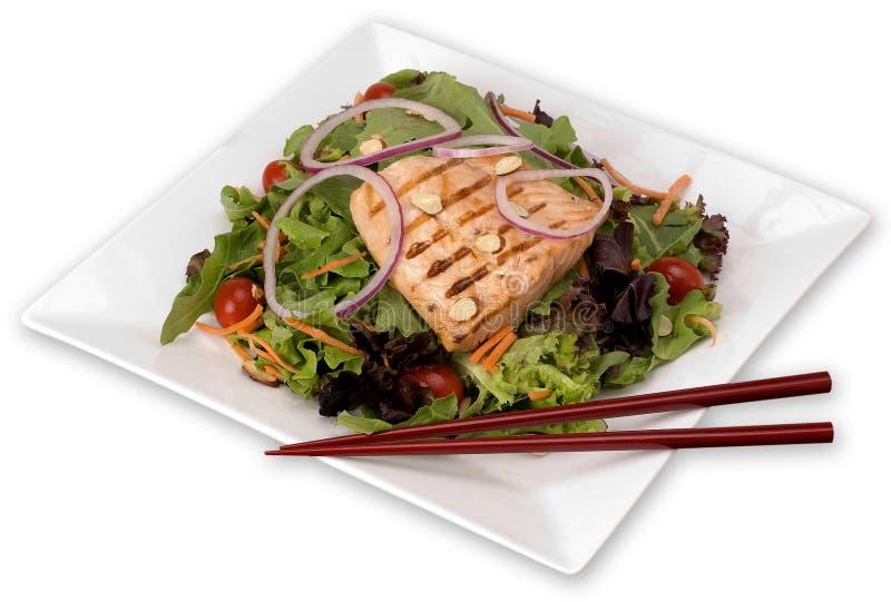 Salmon Salad Grilled sul piatto bianco con Backgroun isolato immagine stock libera da diritti