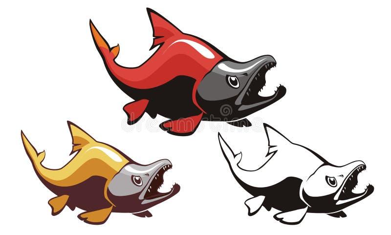 Salmon Sockeye Fish Vector images libres de droits