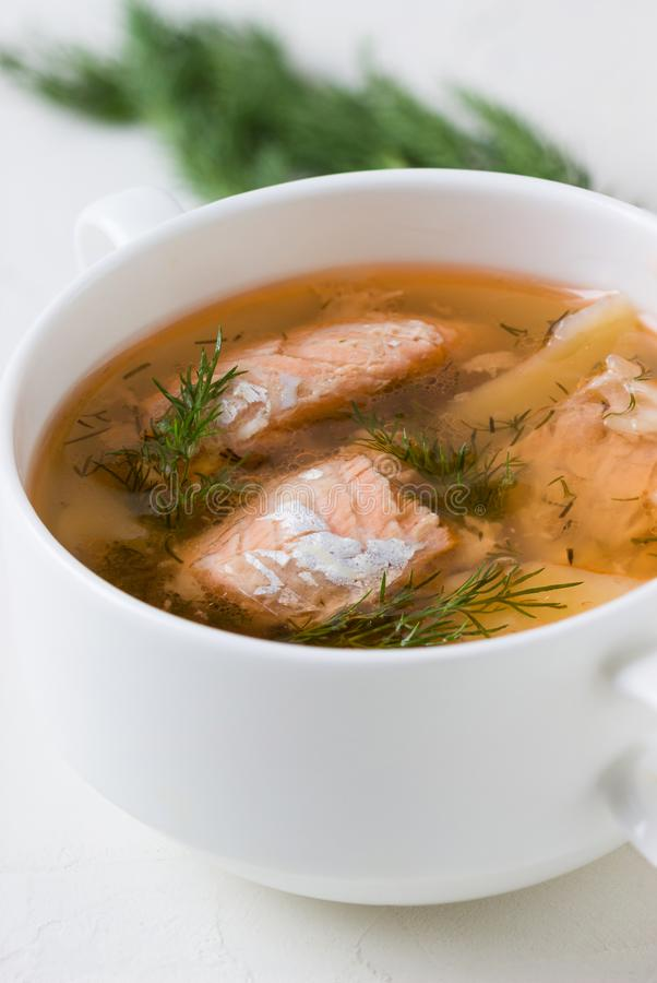 Salmon soup with dill in a saucepan. Fresh Salmon soup with dill in a saucepan. shallow DOF royalty free stock photos