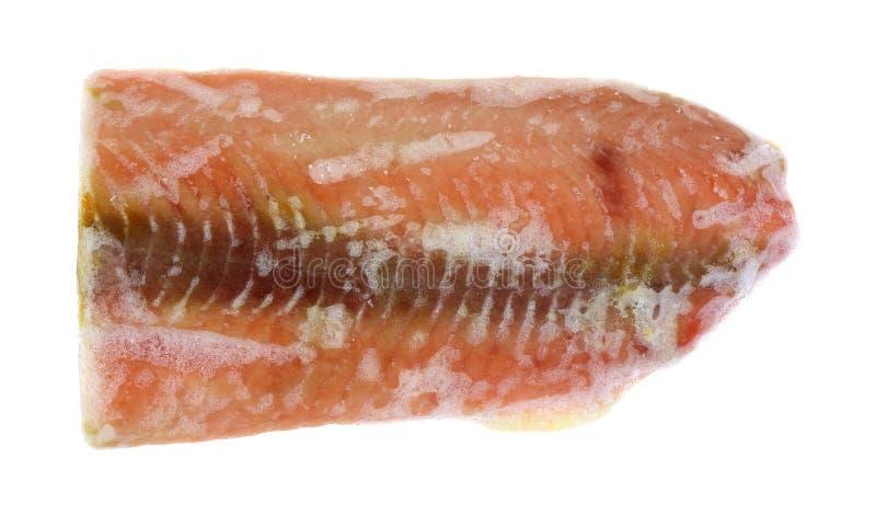 Salmon Steak Frozen fotografia stock libera da diritti