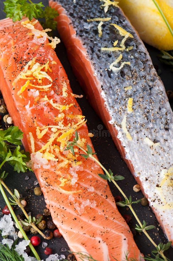 Salmon Steak kritiserar på royaltyfri fotografi
