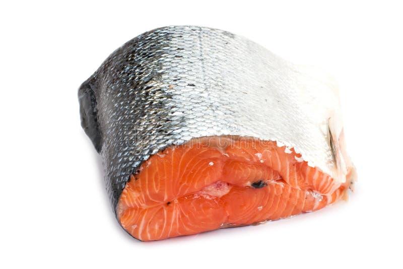 Salmone crudo isolato su fondo bianco immagini stock