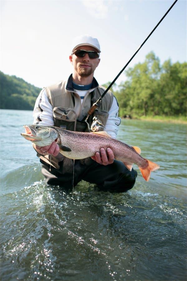Salmone del Danubio fotografie stock