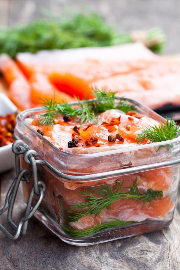 Salmone salato con le erbe in barattolo di vetro su fondo di legno fotografie stock libere da diritti