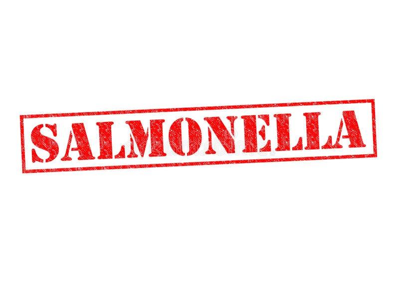 salmonella royaltyfri illustrationer
