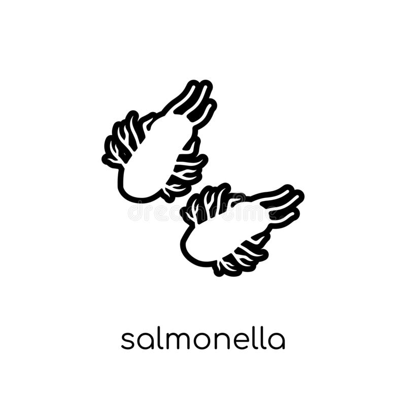 Salmonella icon. Trendy modern flat linear vector Salmonella icon on white background from thin line Diseases collection royalty free illustration