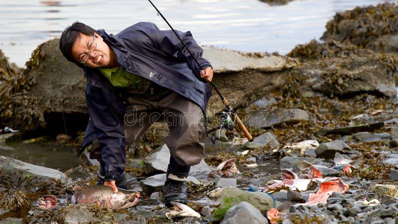 Salmones cogidos pescador asiático en Seward fotografía de archivo libre de regalías