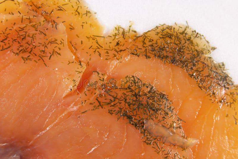 Salmones con un eneldo foto de archivo libre de regalías