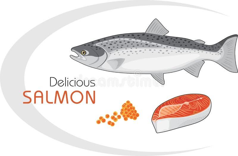Salmones deliciosos ilustración del vector