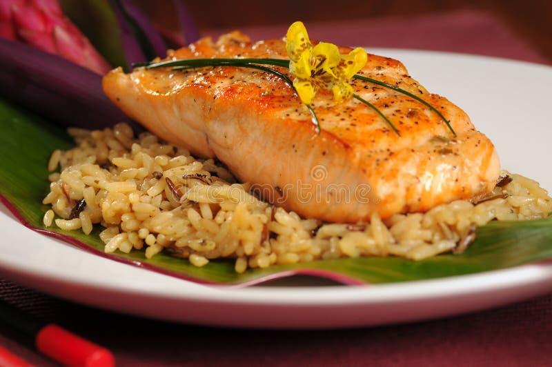Salmones en el arroz fotos de archivo libres de regalías