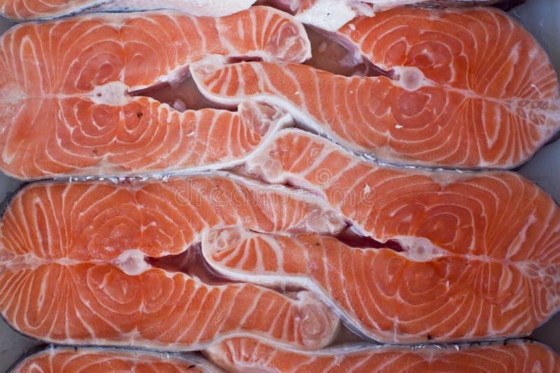 Salmones en el hielo imagen de archivo