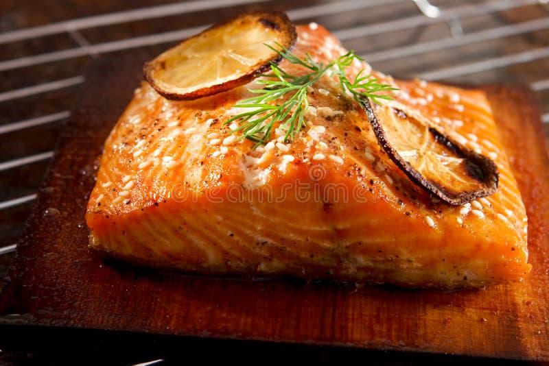 Salmoni cotti fotografie stock libere da diritti