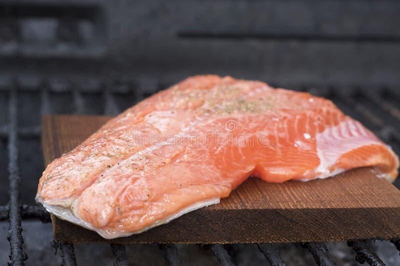 Salmoni della plancia del cedro sulla griglia fotografie stock libere da diritti