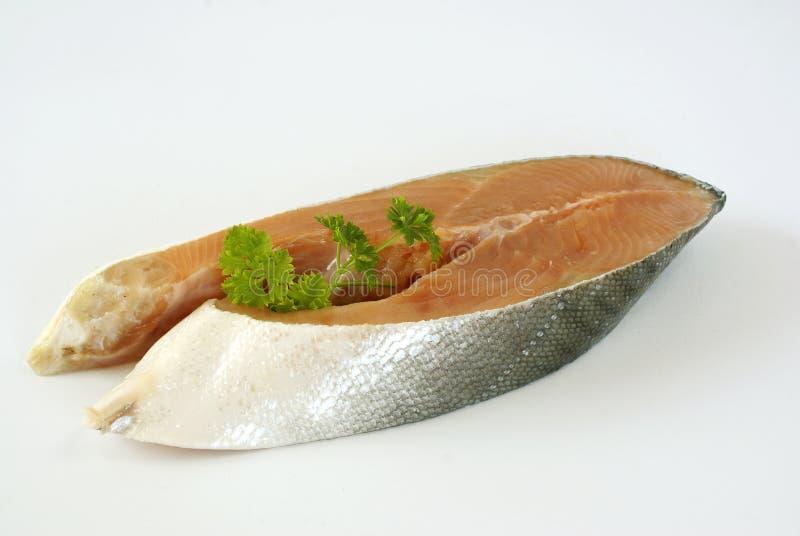 Salmoni grezzi fotografia stock libera da diritti