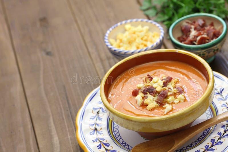Salmorejo, ισπανική κατεψυγμένη σούπα ντοματών στοκ φωτογραφία με δικαίωμα ελεύθερης χρήσης