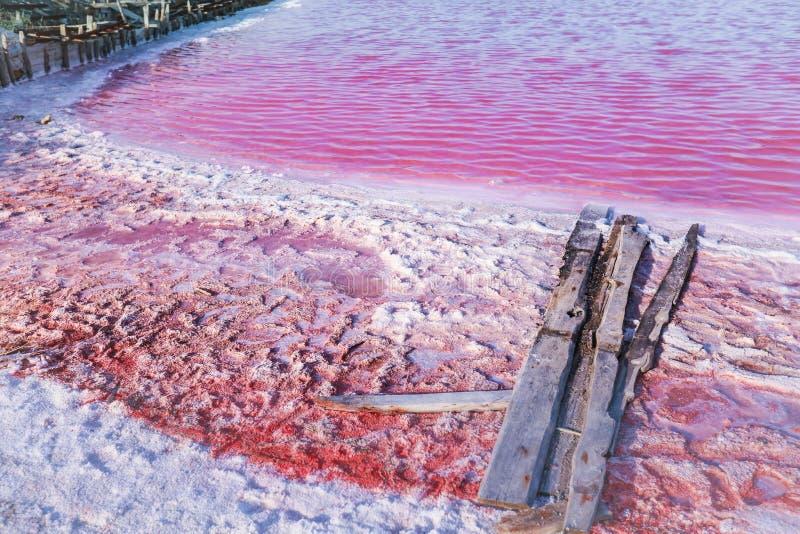 Salmoura e sal de um lago cor-de-rosa, coloridos pelo salina de Dunaliella dos microalgae, famoso para suas propriedades antioxid imagem de stock royalty free