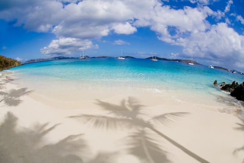 Salomon Beach auf der Karibikinsel von Johannes in den US-Jungferninseln stockfotografie