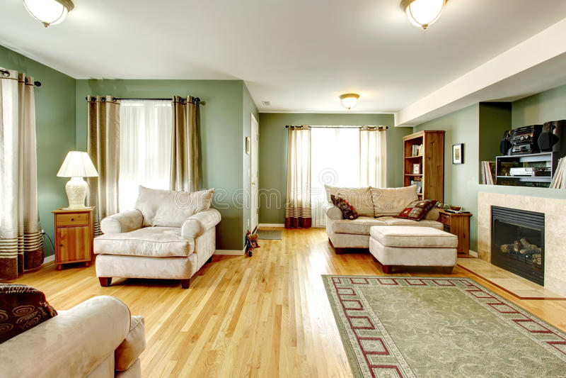 Salon avec une cheminée. photographie stock