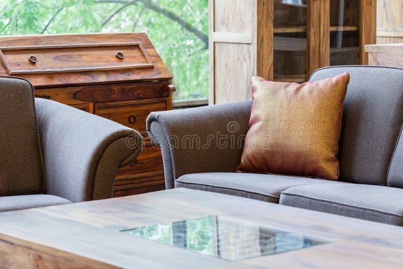 Salon avec une table de coffe photographie stock
