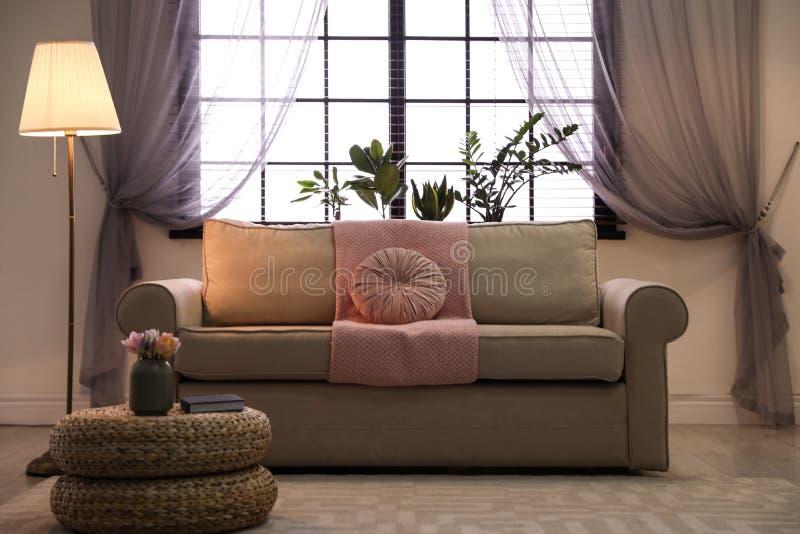 Salon confortable avec les meubles élégants et les éléments décoratifs Id?e pour l'int?rieur images stock
