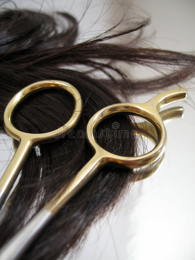 Salon de cheveu 6 images libres de droits