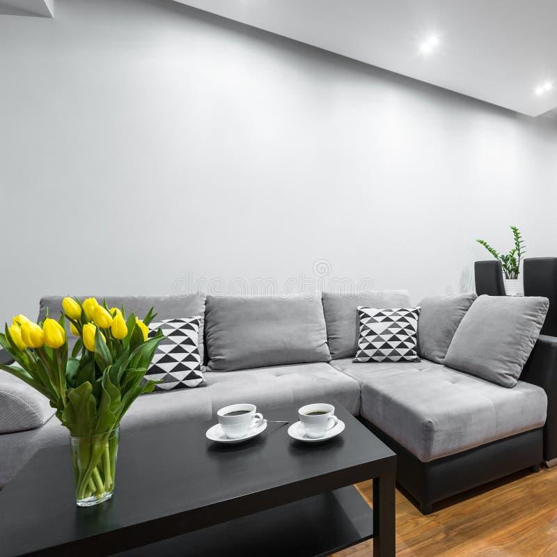 Salon léger avec le sofa photos stock