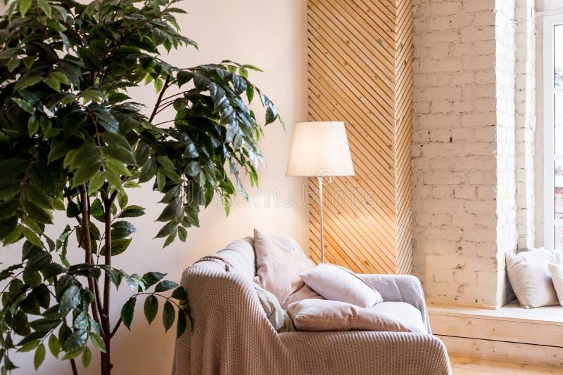 Salon maison intérieur avec canapé, avec parquet et plante décorative, lampe de sol intérieur de la maison Confortable image libre de droits