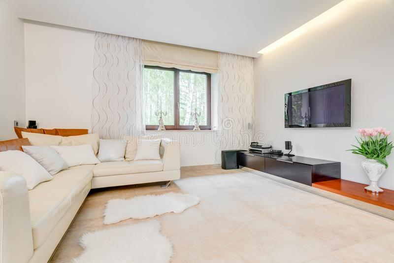 Salon spacieux confortable image libre de droits