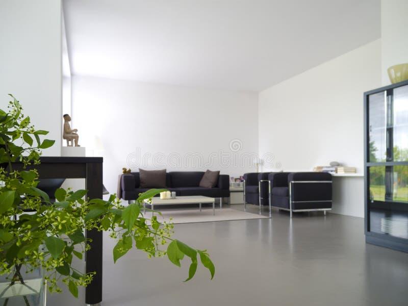 Salone moderno con la pianta d'appartamento fotografia stock