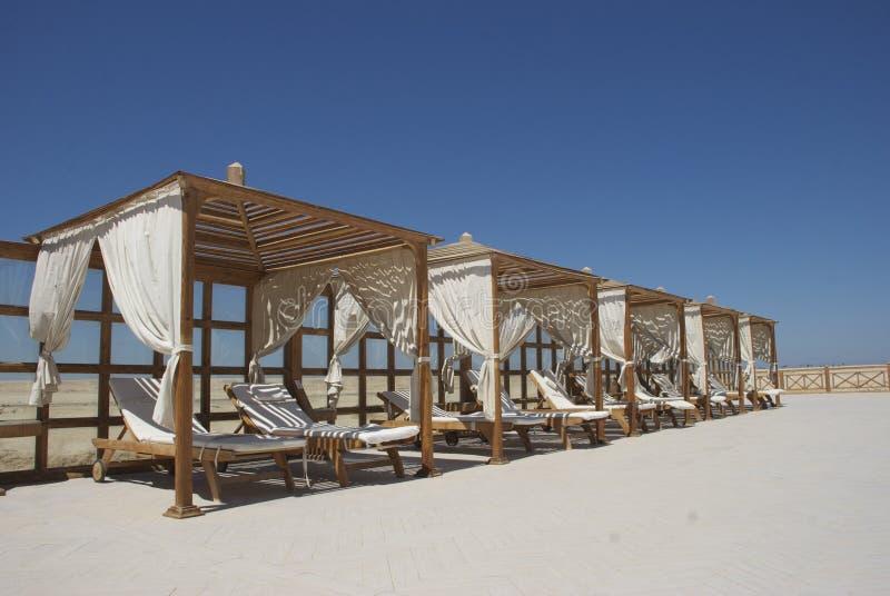Salotto di Sun di lusso sulla spiaggia nella baia del Soma, Egitto immagine stock libera da diritti