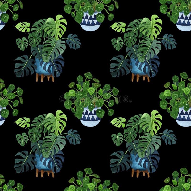 Salowej rośliny akwareli bezszwowy wzór Dom rośliny, figi drzewo, ZZ roślina Zamioculcas, wąż rośliny Sansevieria, skrzypk royalty ilustracja