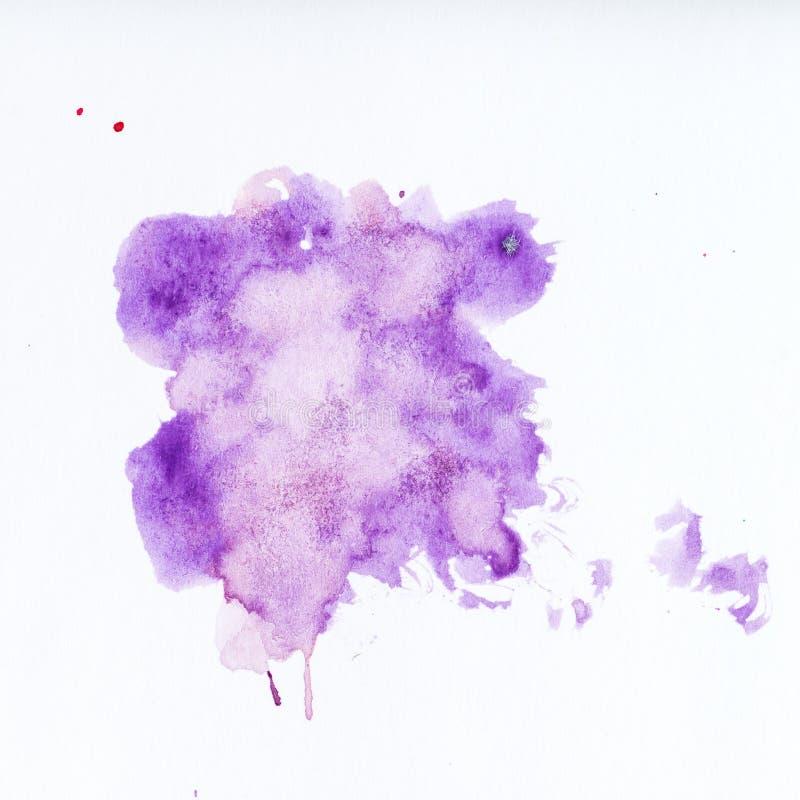 Salpicadura púrpura de la pintura Pinte el chapoteo en el fondo blanco waterco imágenes de archivo libres de regalías