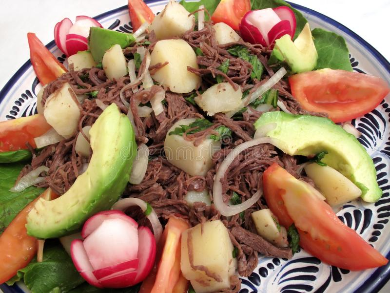 Salpicon Served on a Talavera Plate. Photo of mexican salad dish called salpicon which is shredded flank steak marinated in vinegar then served with potatoes royalty free stock photography