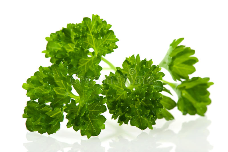 Download Salsa imagem de stock. Imagem de macro, herbs, inteiro - 12810807