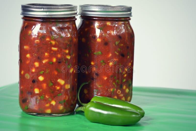 salsa fotografie stock libere da diritti