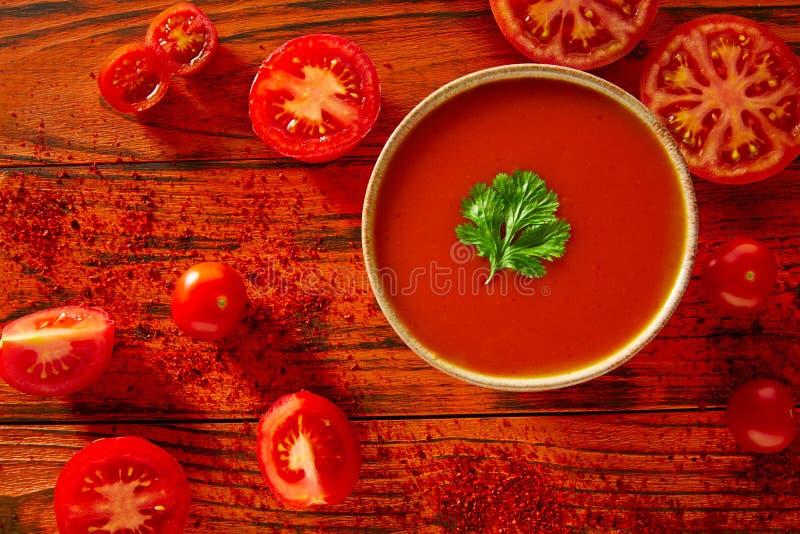 Salsa al pomodoro andalusa di zuppa di verdure fredda nel rosso fotografia stock