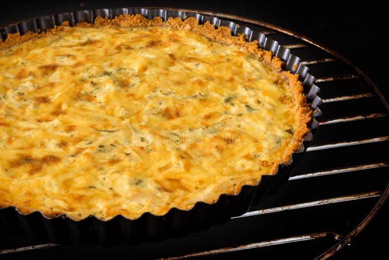 Salsa caseiro da cebola verde do queijo da quiche da galinha e pizza KNI imagens de stock