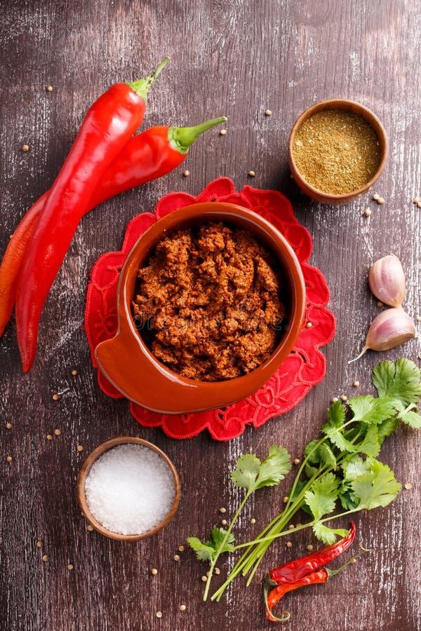 Salsa condimentada picante caliente de Adjika o del ajika fotografía de archivo libre de regalías