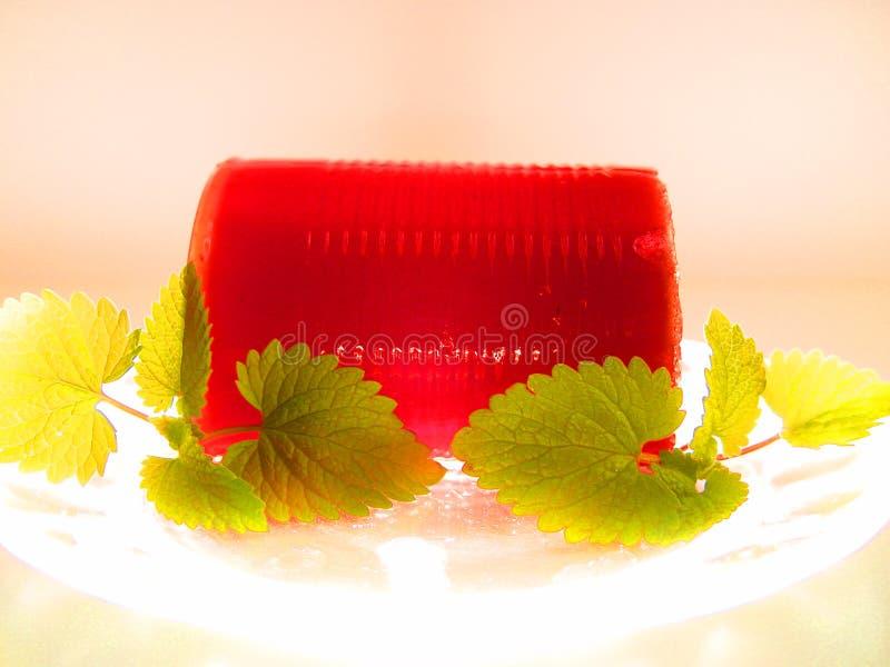 Salsa Di Mirtillo Fotografia Stock