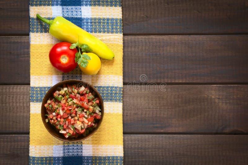 Salsa di Pebre del cileno immagine stock