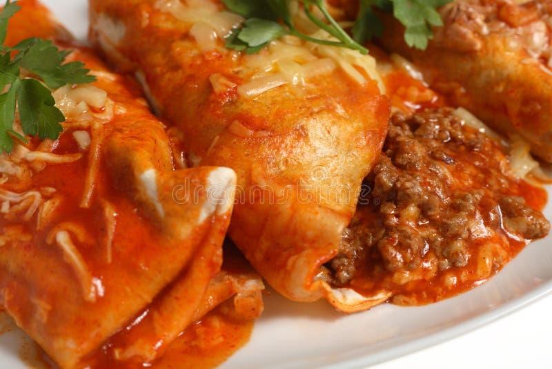 Salsa di pomodori a macroistruzione dei Enchiladas immagine stock libera da diritti