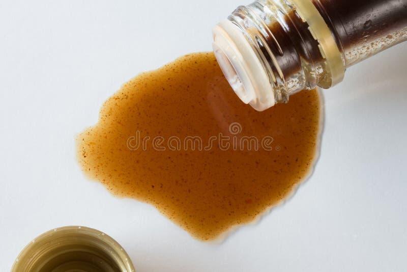Salsa di Szechuan fotografia stock