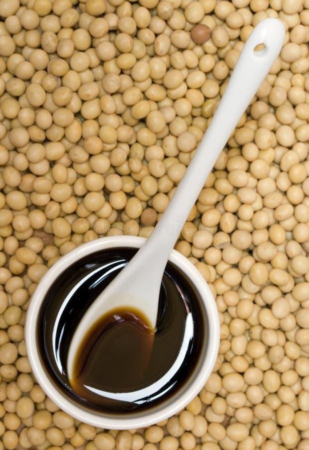 Salsa e fagioli di soia fotografie stock libere da diritti