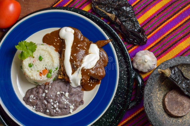 Salsa mexicana del topo con el pollo fotografía de archivo libre de regalías