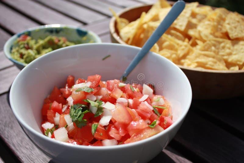 Salsa mit Chips und Guacamolen lizenzfreie stockfotos