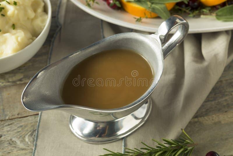 Salsa orgánica caliente de Brown Turquía fotografía de archivo libre de regalías