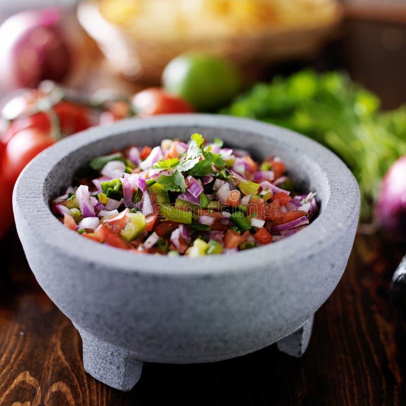 salsa pico de Gallo στοκ εικόνα με δικαίωμα ελεύθερης χρήσης