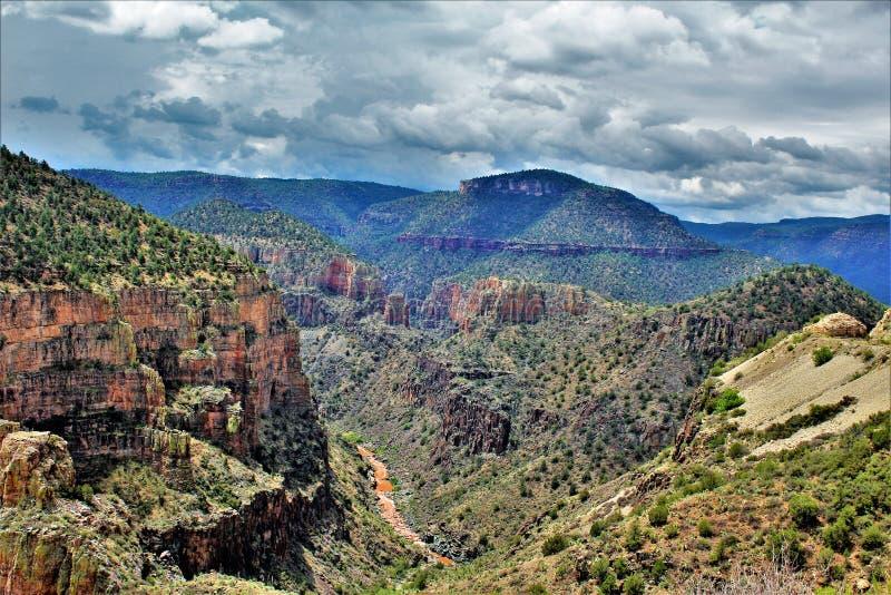 Salt河峡谷自然保护区, Tonto国家森林,希拉县,亚利桑那,美国 库存图片